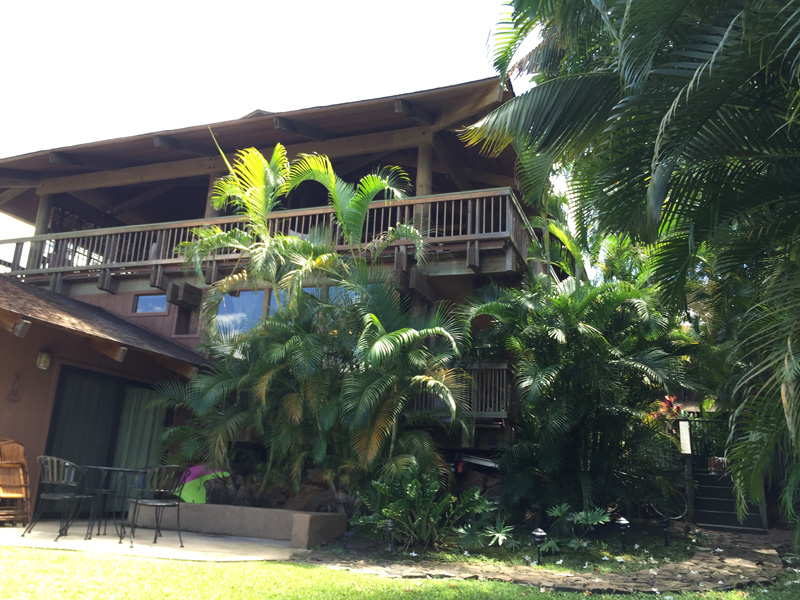 Maui Bed and Breakfast: NO MIN STAY NO CLEAN FEE | Maui What a ...